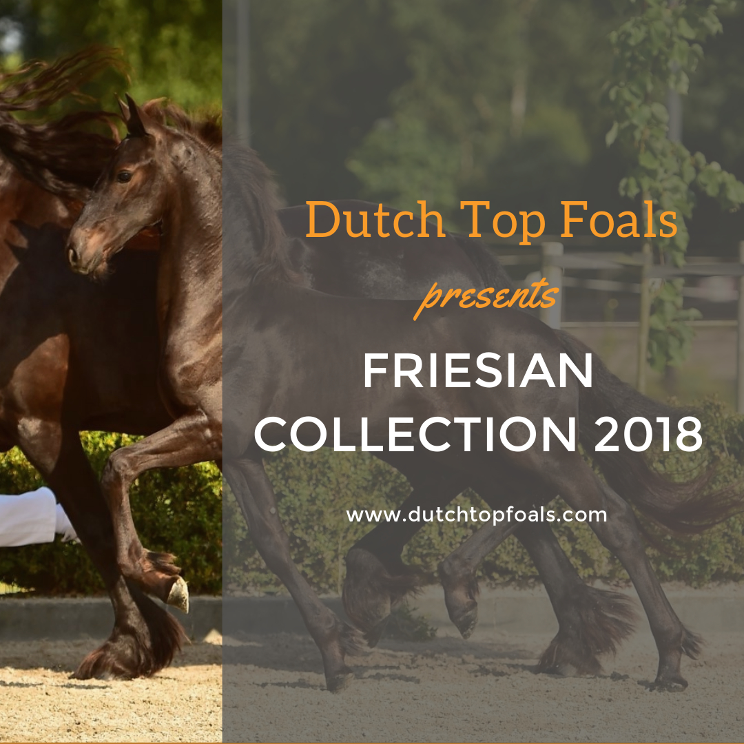 friesiancollection2018
